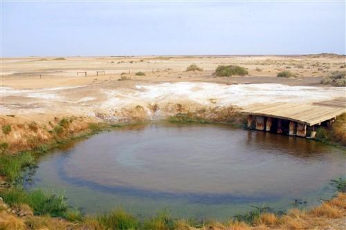 Wabma Kadarbu mound springs