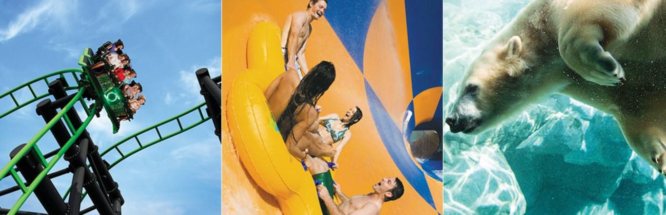 Gold coast theme parks raa